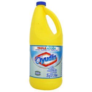 "Lavandina ""AYUDIN"" x 2lts"